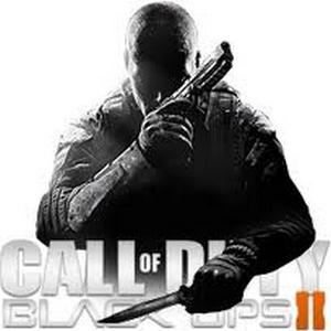 Позволяет играть в Call Of Duty Black Ops 2 стабильно и без вылетов